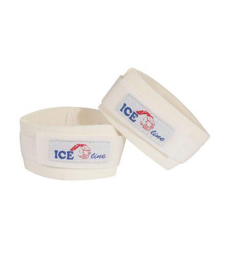 ICEline kodebeskytter